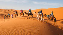 From Marrakech: 2-Day Private Tour to the Zagora Desert, Marrakech, Private Sightseeing Tours