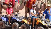 Half Day Camel Ride and Quad Bike in the Palmeraie, Marrakech, Nature & Wildlife