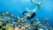 Full Day ALL INCLUDE Lembongan Island Tour With All Activity In The Island, Kuta, Cultural Tours