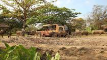 Full Day Tour to Bali Safari Marine Park and Ubud Sighseeing, Ubud, Full-day Tours