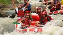 White Water Rafting including Sightseeing to the Temple and Rice Terrace, Ubud, White Water Rafting