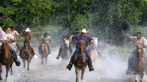 Half-Day Mountain and River Horseback Riding in Punta Cana , Punta Cana, Horseback Riding