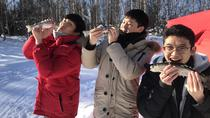 Ice Fishing - Quick & Easy (3-4h), Fairbanks, Fishing Charters & Tours