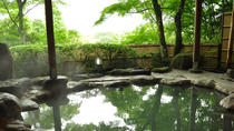 Relaxing Hot Spring Tour in Beitou (4-7 people), Taipei, Thermal Spas & Hot Springs