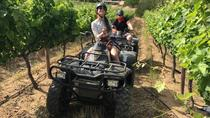 1,5 Hour Nature Quad Bike Trail, Stellenbosch, 4WD, ATV & Off-Road Tours