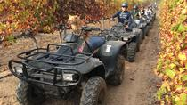 1 Hour Nature Quad bike trail, Stellenbosch, 4WD, ATV & Off-Road Tours