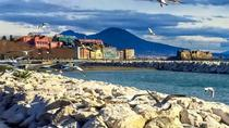 Pompeii Herculaneum and wine testing from Salerno, Salerno, Day Trips