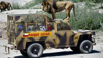 Entrada al Parque Safari, Chile, Attraction Tickets