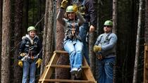 Grizzly Falls Ziplining Expedition, Skagway, Cultural Tours