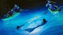 Night Kayak Tour in St Thomas, St Thomas, Kayaking & Canoeing