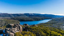 Mount Field National Park Wildlife and Nature Tagesausflug von Hobart mit Mittagessen, Hobart, Day Trips