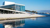 Oslo City Tour, Including the Fram Museum or Kon-Tiki Museum