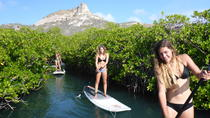 Guided paddleboarding (SUP) mangrove ECO tour for beginners, Curacao, Eco Tours