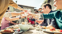 Half-Day Etna Countryside Food and Wine Lovers Tour, Taormina, Food Tours