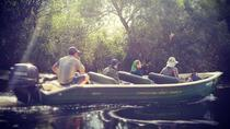 Danube Delta PRIVATE boat trip to Letea Forest (guided tour), Tulcea, Private Sightseeing Tours
