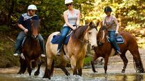 Horse Riding From Bodrum, Bodrum, 4WD, ATV & Off-Road Tours