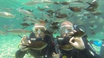 Scuba Diving from Fethiye, Fethiye, Scuba Diving