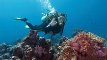 Scuba Diving, Marmaris, Scuba Diving