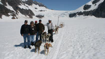 Juneau Helicopter Tour and Dogsledding Experience, Juneau