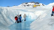 Juneau Helicopter Tour and Guided Icefield Walk, Juneau, Dolphin & Whale Watching