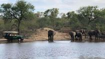 4 Day Budget Kruger National Park Safari, Johannesburg, Multi-day Tours