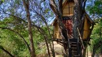 4 Day Lodge and Treehouse Kruger National Park Safari, Kruger National Park, Attraction Tickets