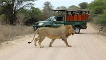 5 Day Classic Kruger National Park Safari, Kruger National Park, Multi-day Tours