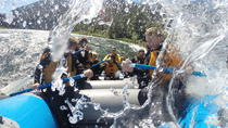 8-mile Whitewater Standard Raft, Jackson Hole, White Water Rafting
