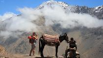 Excursion d'une journée dans les sentiers berbères et les montagnes de l'Atlas, incluant le déjeuner de Marrakech, Marrakech, Day Trips