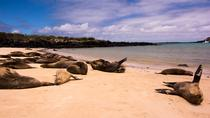 Day Trip to Santa Fe Island from Puerto Ayora, Galapagos Islands, Day Trips