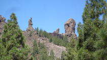 GREAT INSIGHTS OF GRAN CANARIA ROQUE NUBLO PANORAMIC TOUR, Gran Canaria, Half-day Tours
