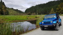 Half-Day Bay of Islands Private Jeep Tour, Bay of Islands, Ports of Call Tours