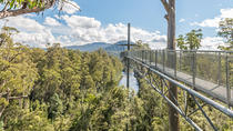 Huon Valley Small-Group Tour from Hobart, Hobart, Day Trips