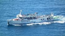 Amalfi Coast Day Cruise: Sorrento to Positano or Amalfi, Sorrento, Day Cruises