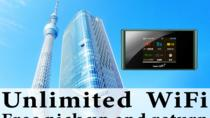 Unlimited WiFi in Japan pick up at Haneda Airport, Tokyo, Self-guided Tours & Rentals