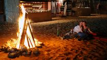 Desert Safari: An Arabian Desert Experience from Dubai, Dubai