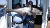 Private Fishing Tour from Lisbon with BBQ Lunch and Drinks, Lisbon, Fishing Charters & Tours