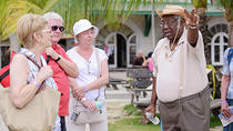 Barbados Shore Excursion: Bridgetown Walking Tour, Barbados, Ports of Call Tours