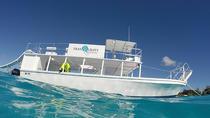 Barbados Snorkel Adventure in Carlisle Bay, Barbados, Other Water Sports