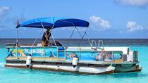Barbados Snorkel Adventure in Carlisle Bay, Barbados, Snorkeling