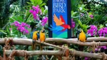 Jurong Bird Park Admission Ticket, Singapore