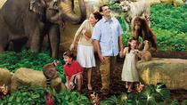Singapore Zoo Admission Ticket, Singapore, Attraction Tickets