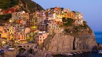 Cinque Terre Full Immersion, Florence, Day Trips