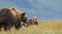 Alaska Bear Country Day Trip to Katmai or Lake Clark by Airplane, Homer, Nature & Wildlife