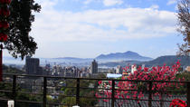 Private Taipei Day Tour including Taipei 101, Din Tai Fung and Hot Spring Experience, Taipei, ...