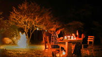 Overnight camping for Leopard watching at the edge of Yala National Park, Colombo, Hiking & Camping