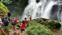 Doi Inthanon National park and 2 hours hiking with private tour, Chiang Mai, Hiking & Camping