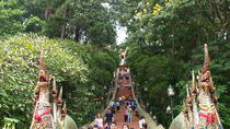 Doi Suthep temple, White temple and hiking to Khun korn waterfall in the bamboo forest, Chiang Mai, ...