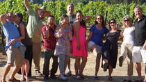 Small-Group Wine-Tasting Tour through Napa or Sonoma Wine Country, Napa & Sonoma, Private ...