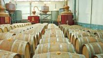 Appleton Estate Rum Tour from Negril, Negril, Day Trips